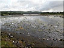 NR8262 : North of the Kennacraig causeway by C Michael Hogan