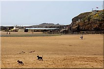 SS2006 : Bude swimming pool and coastguard lookout by Steve Daniels