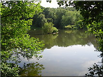 TQ2686 : Vale of Health (pond) by Peter S