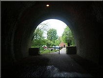 SK1746 : Mouth of the Ashbourne Tunnel by Helene Roe