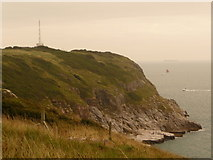 SX9456 : Berry Head: southern slopes by Chris Downer