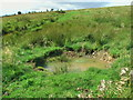NT8408 : Trackside shell-hole on Hog Knowe by ian shiell