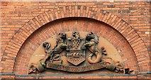 J3374 : The Belfast Coat of Arms by Albert Bridge