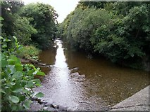 J3731 : The River Shimna from the Bryansford Road Bridge by Eric Jones