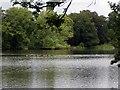 SJ9284 : Poynton Lake by Mike Kirby