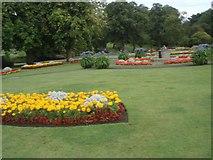 SE2955 : Flowerbeds in the Valley Gardens by Paul Gillett