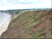 TA1281 : Filey Country park looking towards cobble landing by phillip andrew carl taylor