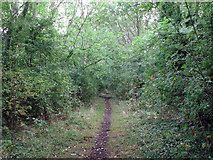 SK9224 : Woolsthorpe: trackbed of the High Dyke Branch by John Sutton