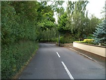 J3633 : The well-wooded eastern section of Tollymore Road by Eric Jones
