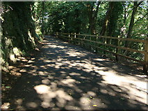 ST5393 : National Cycle Route 42 in Chepstow Garden City by Ruth Sharville