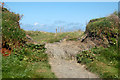 SW8573 : Gap in a wall along the coastpath south of Treyarnon by Andy F