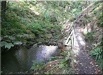 SE0722 : Pool and footbridge, Maple Dean Clough by Humphrey Bolton