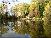 NN9952 : The Curling Pond, Tulliemet by John Watson