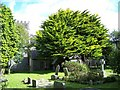 SW8739 : Church of St Philleigh, Philleigh by Geoff Pick