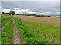 NO1141 : Farmland at Gourdie by Dr Richard Murray