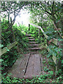 TG4010 : Plank bridge and steps by Evelyn Simak