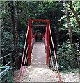 NZ4138 : Gunners Pool Bridge by Roger Smith