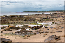 NT4884 : Gullane Bay by Chris Sheard