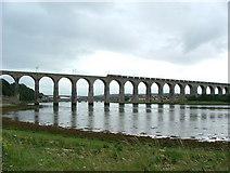 NT9953 : The Royal Border Bridge by William Stafford