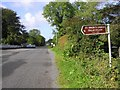 G7451 : Road at Ballintrilick by Kenneth  Allen