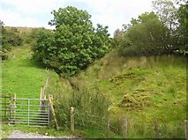 G8246 : Sracleightreen Townland by Kenneth  Allen