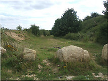 SE5114 : Blocked off Quarry Track off Long Lane by Bill Henderson
