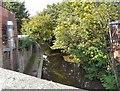 SJ9297 : Ashton Canal by Gerald England