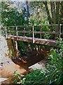 SO8166 : Footbridge over Dick Brook by P L Chadwick