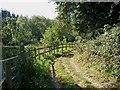 SO8166 : Bridleway & Geopark Way by Lower Astley Wood by P L Chadwick