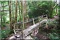 TQ5936 : Footbridge on the Tunbridge Wells Circular Path in Chase Wood by N Chadwick