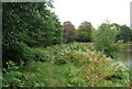TQ5734 : Tunbridge Wells Circular Path crosses the earth dam by a small lake, Eridge Park by N Chadwick