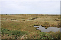 TG0345 : Saltmarsh at Blakeney by Hugh Venables