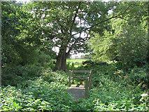 TM3898 : Stile on footbridge by Evelyn Simak