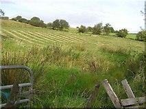G9135 : Lurgan Townland by Kenneth  Allen