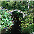 NO2695 : Packhorse Bridge by Keith Grinsted