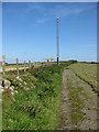 SM9137 : Communications mast near Rhosycaerau by Pauline E