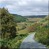 SN8056 : The upper Tywi Valley, Powys by Roger  Kidd
