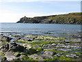 SM7931 : Abereiddi Bay by Pauline E