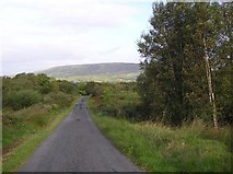 H0136 : Road at Brockagh Upper by Kenneth  Allen