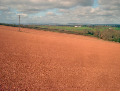 SO5657 : Arable field north of Docklow by Trevor Rickard