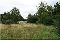 TQ1350 : Ranmore Common Road: the pond by Hugh Craddock
