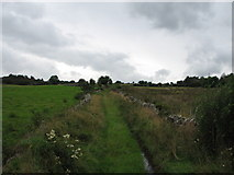 C2324 : Country lane(2) at Carn High by Willie Duffin