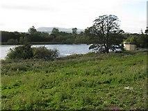 NT2872 : Duddingston Loch from the Manse by M J Richardson