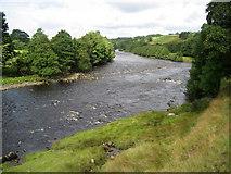 NY9724 : River Tees by Chris Heaton