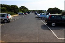 SX9456 : Car Park at Berry Head by Steve Daniels