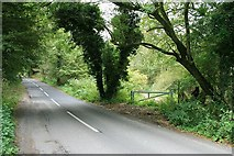 TQ1148 : White Down Road: Abinger Roughs by Hugh Craddock