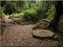 SX9065 : Plinth, Chapel Hill Pleasure Grounds by Derek Harper