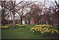 TG2308 : The Cathedral Green in Spring, Norwich by nick macneill