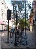 SE3320 : Signpost in Cross Street by Mike Kirby