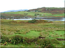 NG3537 : Grazing land overlooking Loch Beag by Dave Fergusson
